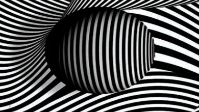 Photo of هنرهای تجسمی چیست؟